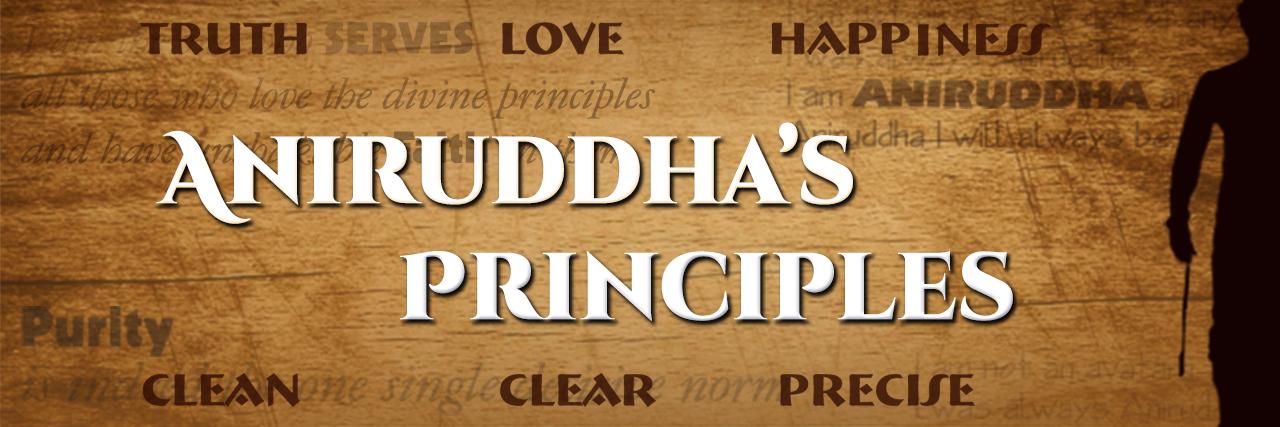 Aniruddhas Principles2_1