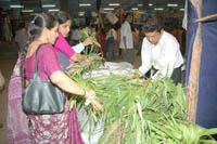 Bhaktas are submitting the home grown fodder at Shri Harigurugraam (2)