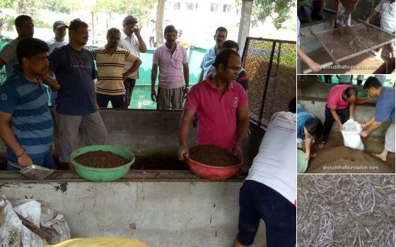 Vermiculture project: 1968 kg Organic Fertilizer collected from Mumbai