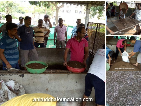 Aniruddha Foundation - Vermiculture 1968-Extended Western Zone