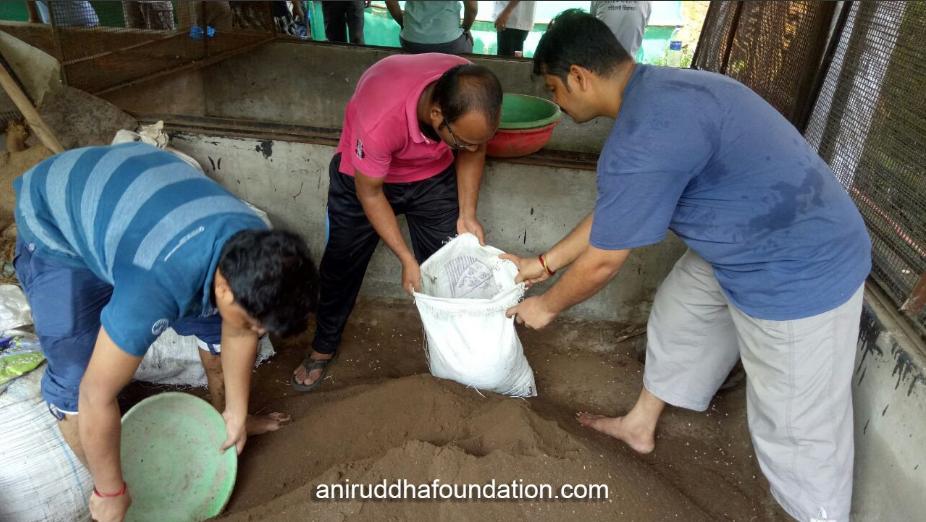 Aniruddha Foundation - Vermiculture-Oct 15, 2017 (1)