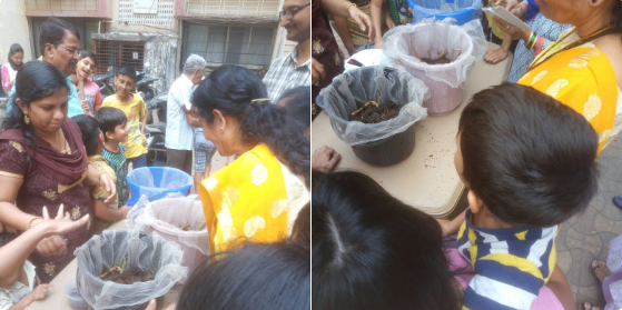 Vermiculture demonstration at Borivali